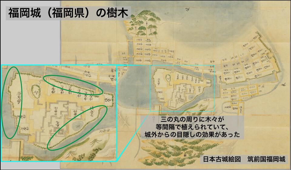 福岡城の樹木
