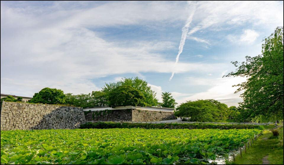 福岡城の堀