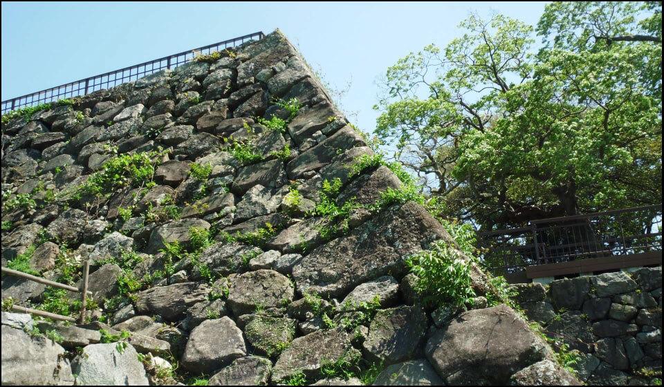 福岡城の天守台