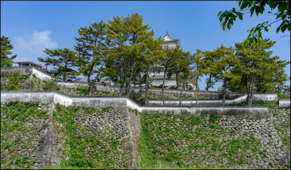 島原城の石垣(修復された箇所ではありません)
