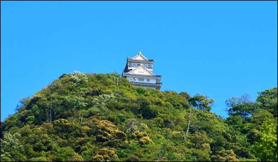 稲葉山城の戦い(岐阜城)