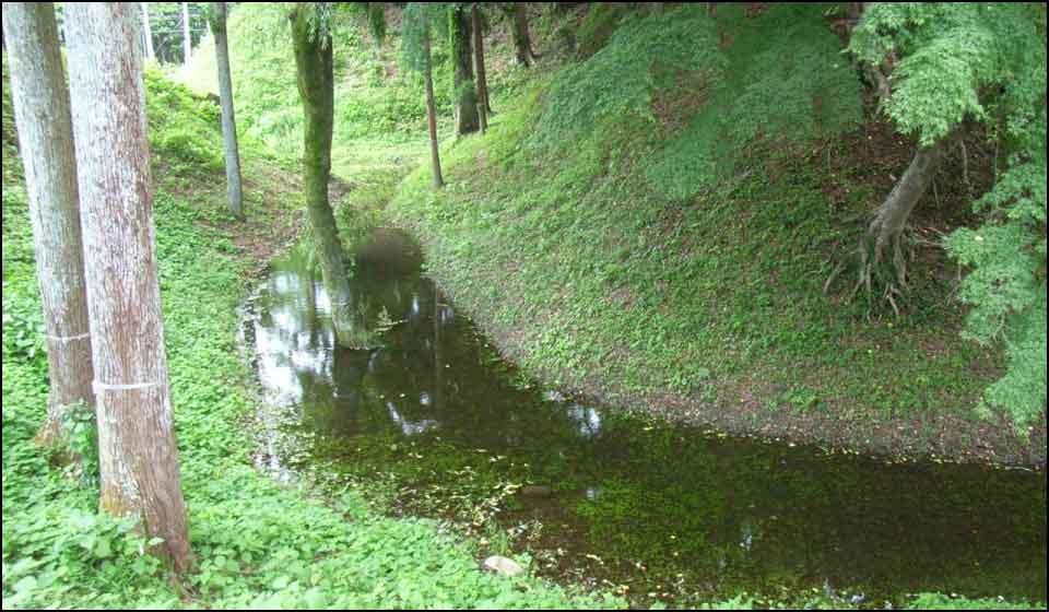 長篠城に残る堀と土塁