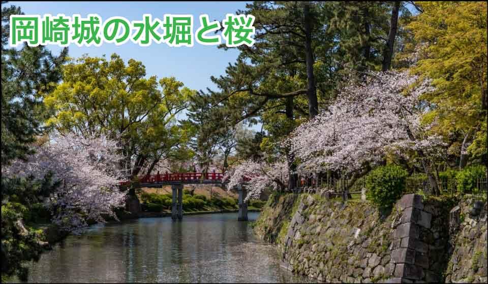 岡崎城の水堀と桜